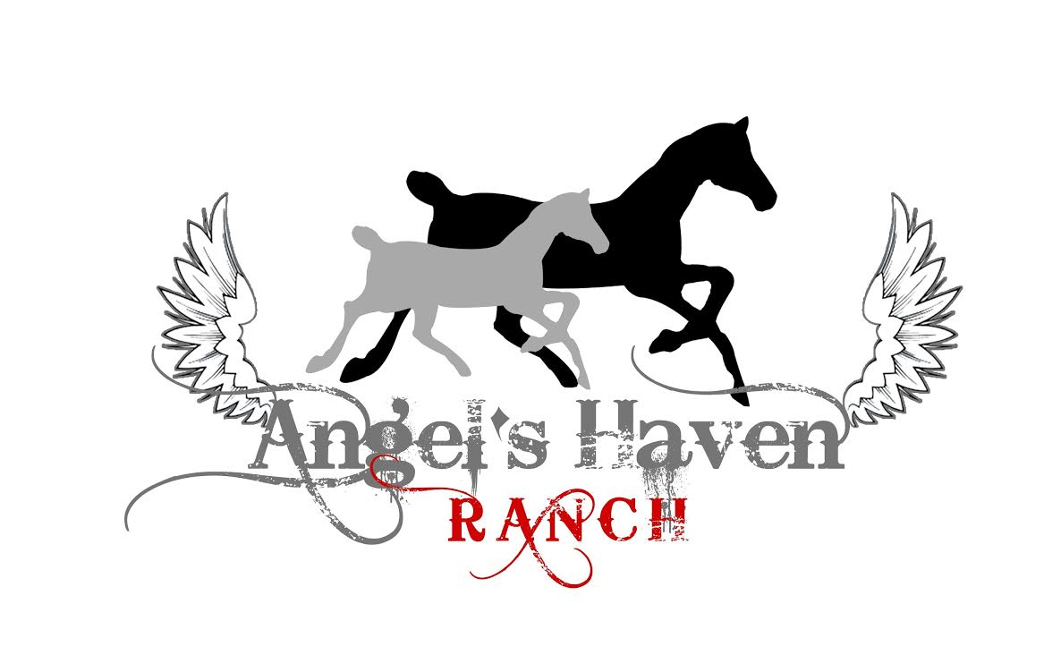 Angel's Haven Ranch